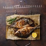 Grilled Fish Dorado on metal grill grid. With lemon and rosemary on dark background Royalty Free Stock Image