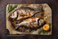 Grilled Fish Dorado Royalty Free Stock Image