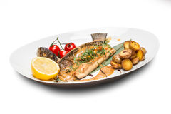 Grilled Fish Fillet with BBQ Stock Images