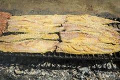 Grilled fish fillet Stock Images