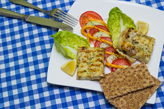 Grilled fish fillet Stock Image