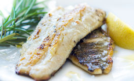 Grilled Fish Fillet Stock Image