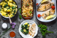 Grilled fish fillet with potato and salad Royalty Free Stock Photography
