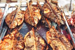 Grilled fish on the fish-market. Stock Photo