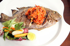 Grilled fish food portion Stock Photography