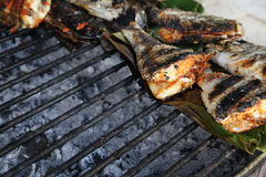 Grilled fish food portion Royalty Free Stock Photos