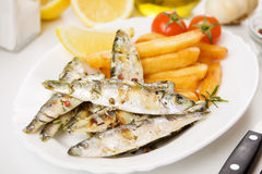 Grilled fish with french fries Royalty Free Stock Photography