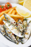 Grilled fish with french fries Royalty Free Stock Image