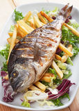 Grilled fish with french fries Royalty Free Stock Photos
