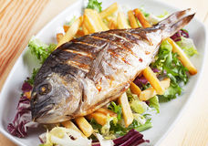 Grilled fish with french fries Stock Images