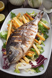 Grilled fish with french fries and salad Royalty Free Stock Image