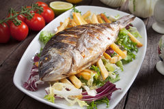 Grilled fish with french fries and salad Stock Photography