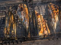 Grilled fish fried in smoke. Barbecue concept. Grilled fish fried in smoke. Barbecue concept stock images