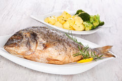 Grilled fish. Grilled gilt head sea bream on plate with lemon and rosemary and potatoes. Mediterranean bright seafood background royalty free stock photos