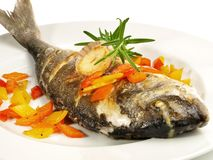 Grilled Fish - Gilthead Seabream. On white Background stock photo