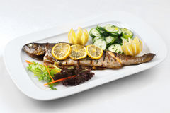 Grilled fish and green salad in a white plate Stock Images