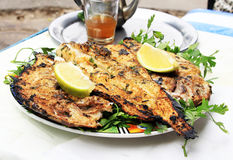 Grilled fish with greens Stock Image