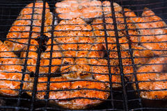 Grilled fish on a grill Stock Images