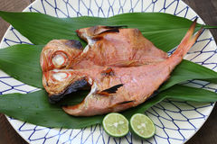 Grilled fish, japanese cuisine Royalty Free Stock Photography