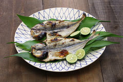 Grilled fish, japanese cuisine Stock Images