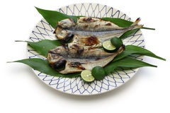Grilled fish, japanese cuisine Stock Image