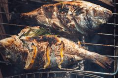 Grilled fish with lemon on the grid Barbeque in the garden in summer.  Stock Photography