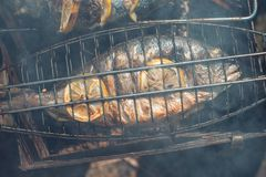 Grilled fish with lemon on the grid Barbeque in the garden in summer.  Stock Image