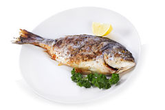 Grilled fish with lemon and parsley Royalty Free Stock Image