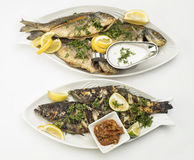 Grilled Fish with Lemon Slices, Grilled seafood served on plate isolated on white Royalty Free Stock Photos