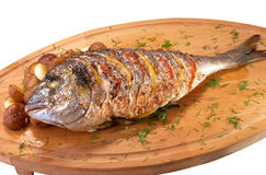Grilled Fish with Lemon and Tomato Stock Images