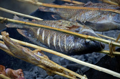 Grilled fish on market Laos Royalty Free Stock Photos