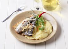 Grilled fish with mashed potatoes Stock Photos