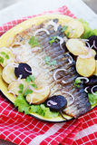 Grilled fish with onions Stock Image