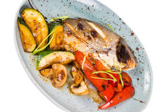 Grilled fish on plate. With grilled vegetables isolated on white Stock Image