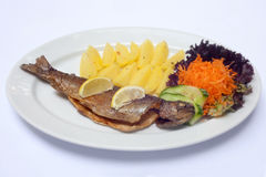 Grilled fish and potatoes. Lunch Royalty Free Stock Photography
