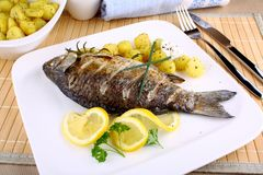 Grilled fish with potatoes, sauce, lemon and cutlery Royalty Free Stock Images