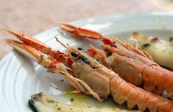 Grilled fish with prawns Stock Images