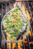 Grilled fish on the rack Royalty Free Stock Photo