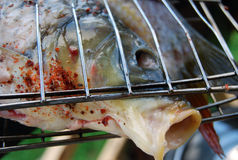 Grilled fish. Fish ready for the cooking on grill Stock Photos