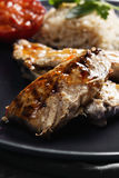 Grilled fish with rice closeup Stock Images
