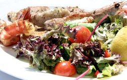 Grilled Fish Salad. Mixed grilled fish and salad Stock Photos