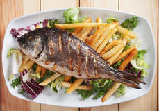 Grilled fish with salad and french fries Royalty Free Stock Images