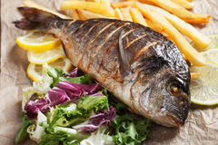 Grilled fish with salad and french fries Royalty Free Stock Photography