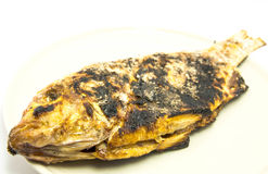 Grilled fish with salt and black burn marks Stock Photo
