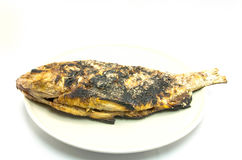 Grilled fish with salt and black burn marks Stock Image