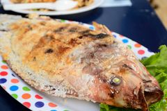 Grilled fish with salt. On a plate Thai local food Royalty Free Stock Photography