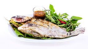 Grilled fish with salt on white plate Stock Photo