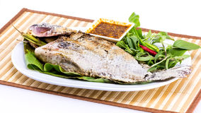 Grilled fish with salt on white plate Stock Photography