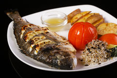 Grilled fish sea bream on barbecue Stock Photography