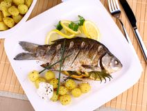 Grilled fish served with potatoes, lemon and sauce Royalty Free Stock Image